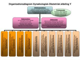110920 Organisationsdiagram hele Afd Y