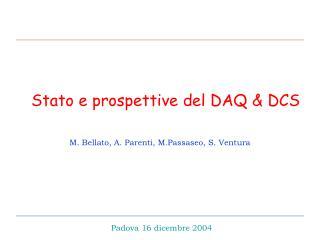 Stato e prospettive del DAQ & DCS