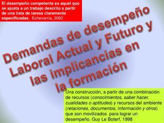 Demandas de desempeño Laboral Actual y Futuro y las implicancias en  la formación