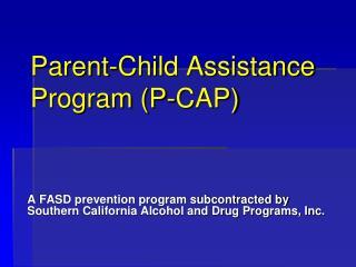 Parent-Child Assistance Program (P-CAP)