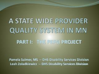A STATE WIDE  PROVIDER QUALITY SYSTEM IN MN