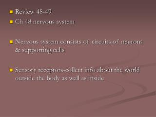 Review 48-49 Ch 48 nervous system