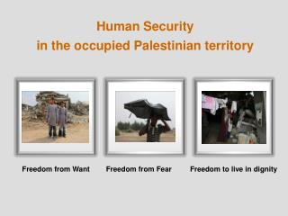 Human Security  in the occupied Palestinian territory