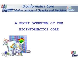 A short  overview of the Bioinformatics Core