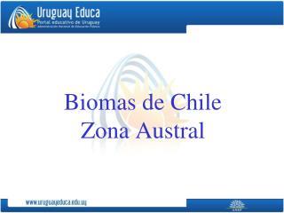 Biomas de Chile Zona Austral