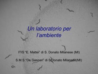 """Un laboratorio per l'ambiente ITIS """"E. Mattei"""" di S. Donato Milanese (MI)"""