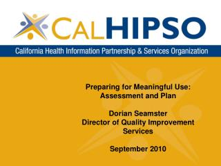 Preparing for Meaningful Use:  Assessment and Plan Dorian Seamster