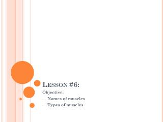 Lesson #6: