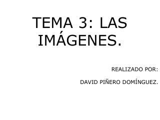 REALIZADO POR: DAVID PIÑERO DOMÍNGUEZ.