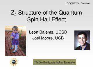 Z 2  Structure of the Quantum Spin Hall Effect