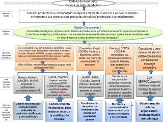 MSAs  y  MSBas  realizan manejo forestal de acuerdo con la zonificación del PMDTI