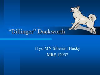 """Dillinger"" Duckworth"