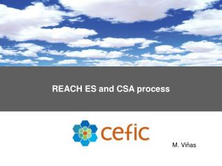 REACH ES and CSA process