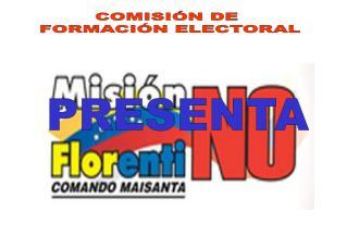 COMISIÓN DE  FORMACIÓN ELECTORAL