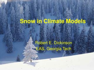 Snow in Climate Models