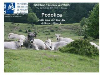 """Presentazione del libro  """"La Podolica"""" di Rocco Giorgio Potenza, 14 marzo 2009 ore 10,30"""