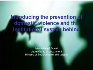 Introducing the prevention of domestic violence and the institutional system behind