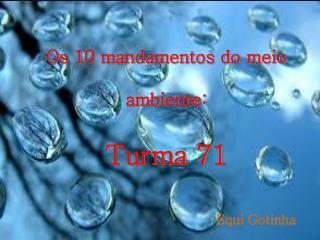 Os 10 mandamentos do meio ambiente: Turma 71