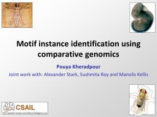 Motif instance identification using comparative genomics