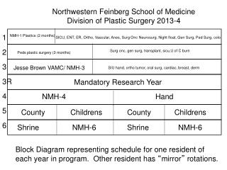 Northwestern Feinberg School of Medicine Division of Plastic Surgery 2013-4