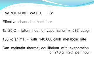 EVAPORATIVE  WATER  LOSS Effective  channel  -  heat  loss