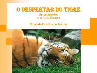 O DESPERTAR DO TIGRE Apresentação: Ana Paula Mourato Grupo de Estudos do Trauma