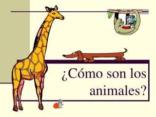 ¿Cómo son los animales?