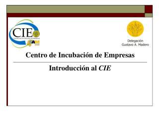 Centro de Incubación de Empresas Introducción al  CIE