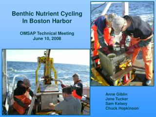 Benthic Nutrient Cycling In Boston Harbor OMSAP Technical Meeting June 10, 2008