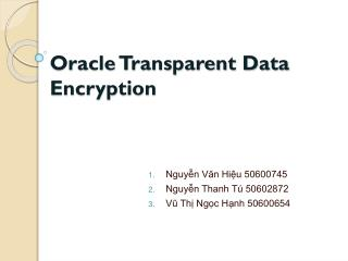 Oracle Transparent Data Encryption