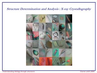 Structure Determination and Analysis : X-ray Crystallography