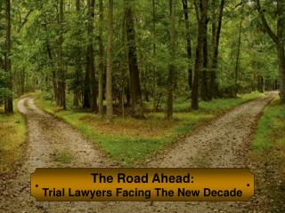The Road Ahead : Trial Lawyers Facing The New Decade