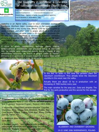 The blueberry in Valtellina: a new area of cultivation in Lombadia (North Italy)