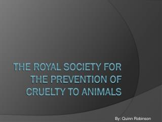 The Royal Society for the Prevention of Cruelty to Animals