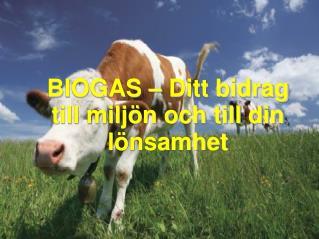 BIOGAS – Ditt bidrag till miljön och till din lönsamhet