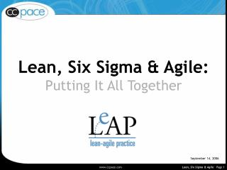 Lean, Six Sigma & Agile: Putting It All Together