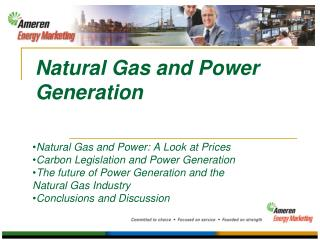 Natural Gas and Power Generation
