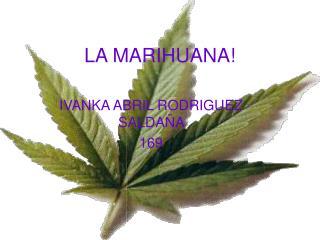 LA MARIHUANA!