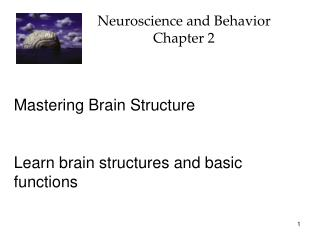 Neuroscience and Behavior Chapter 2
