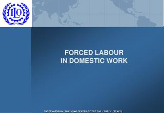 FORCED LABOUR  IN DOMESTIC WORK