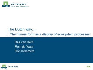 The Dutch way….