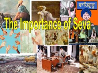 The Importance of Seva