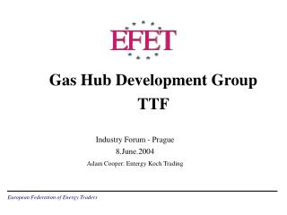 Gas Hub Development Group TTF