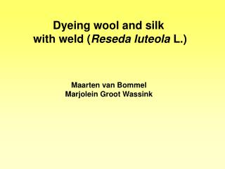 Dyeing wool and silk  with weld ( Reseda luteola  L.)