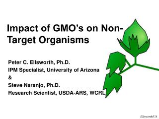 Impact of GMO�s on Non-Target Organisms