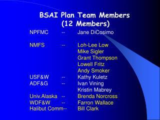 BSAI Plan Team Members  (12 Members)