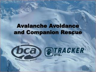Avalanche Avoidance  and Companion Rescue