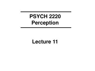PSYCH 2220 Perception Lecture 11