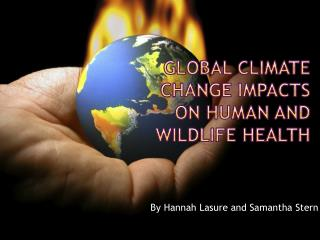 Global Climate Change Impacts on Human and Wildlife Health