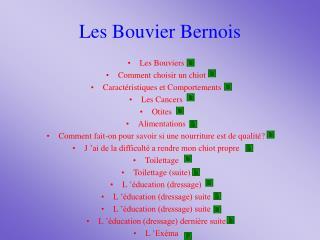 Les Bouvier Bernois